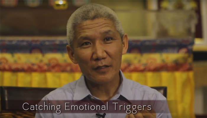 Catching Emotional Triggers with Thupten Jinpa, Ph.D.