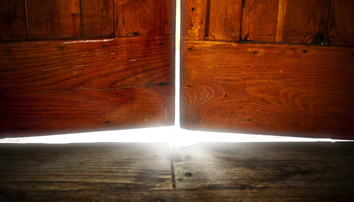 Opening the Doors to the Self - Pain as a Guidepost
