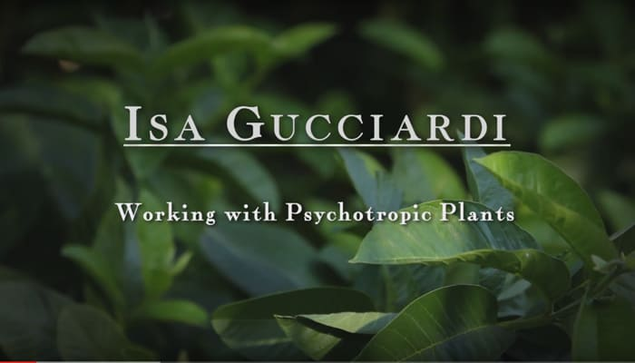 Working with Psychoptropic Plants