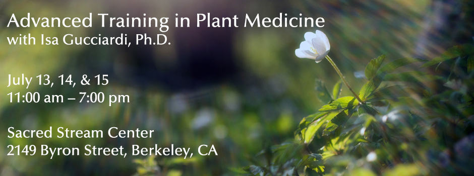 Advanced Training in Plant Medicine_Slider