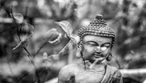 Article: The Journey: Buddhism and Shamanism at the Crossroads