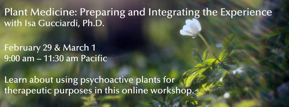 Plant Medicine_Slider